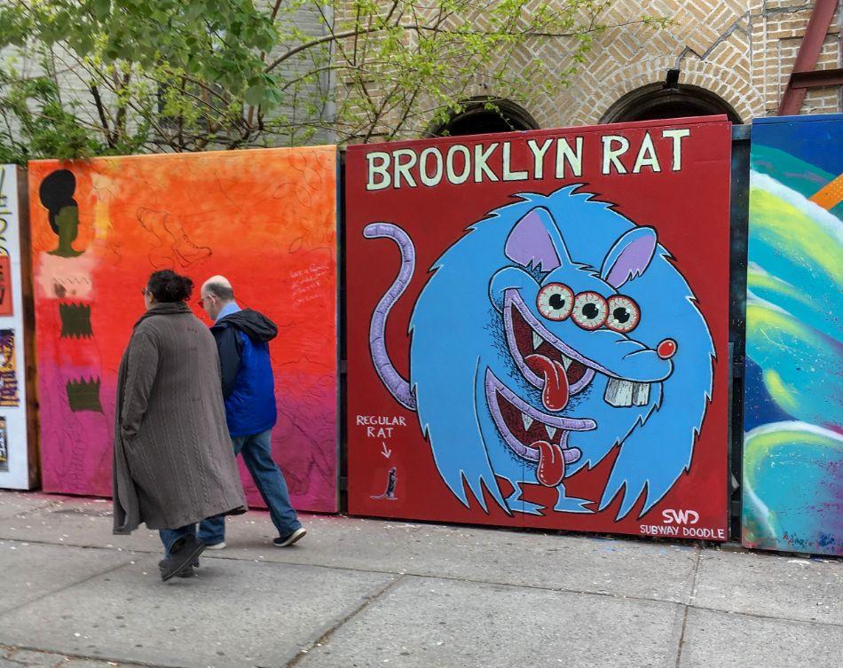 Brooklyn Rat