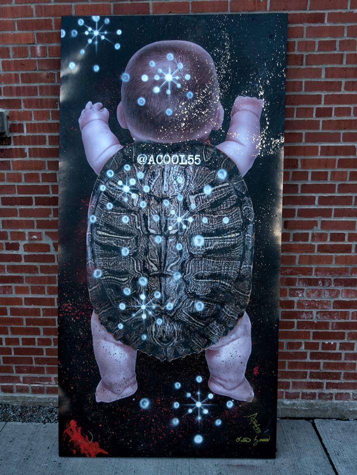Turtle Boy Wall