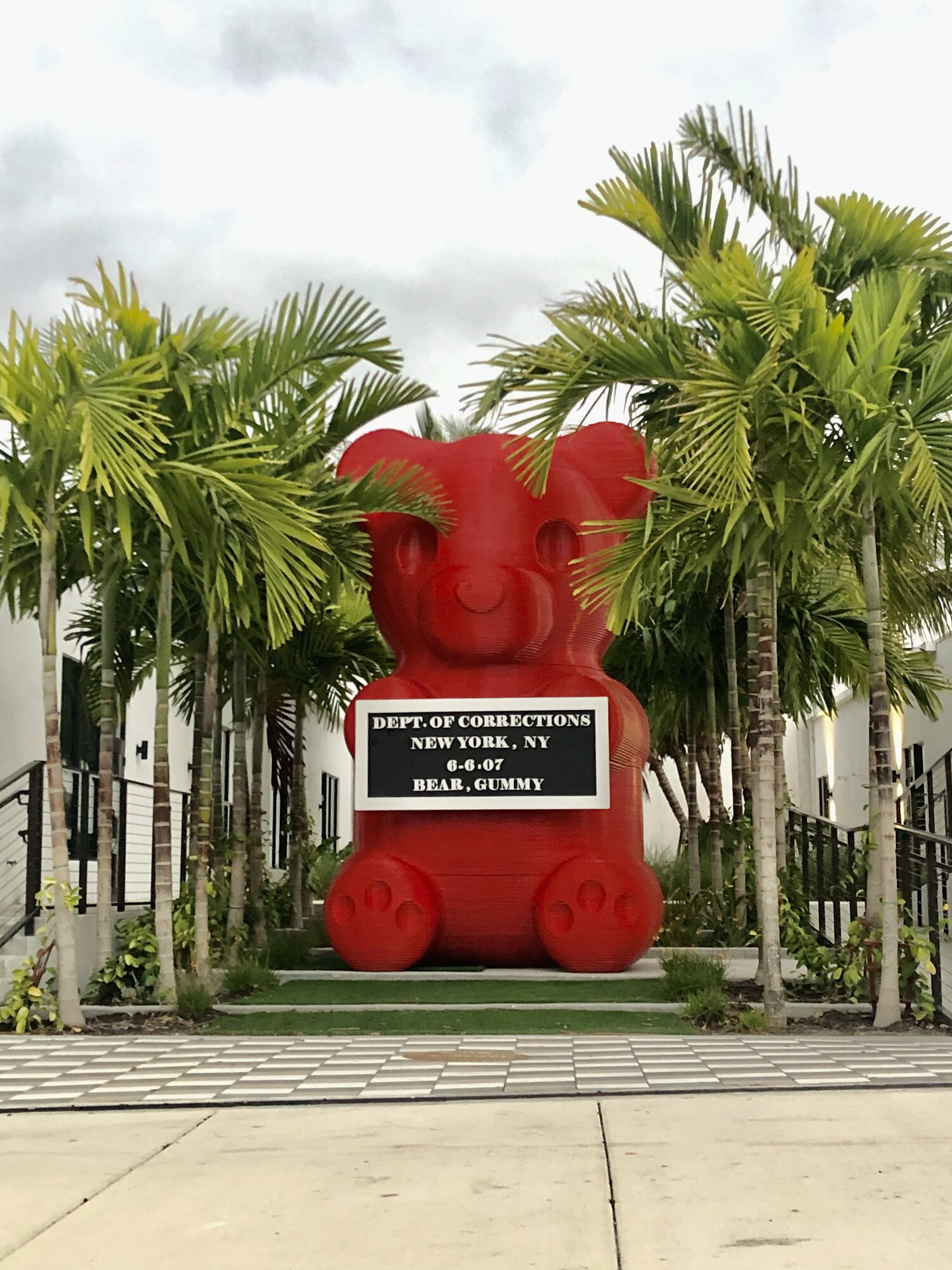 Large red bear
