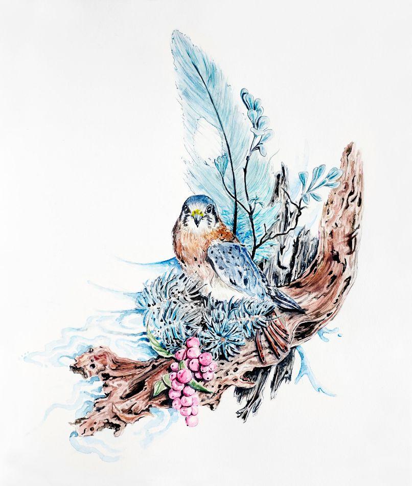 Bird by Natalia Jheté