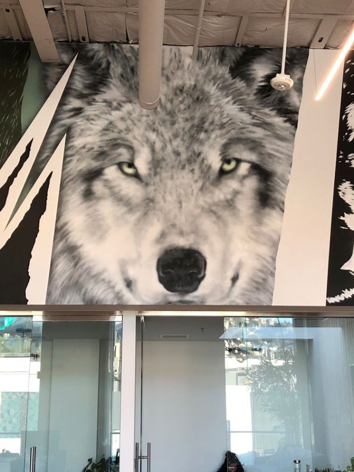 Wolf by PADHiA