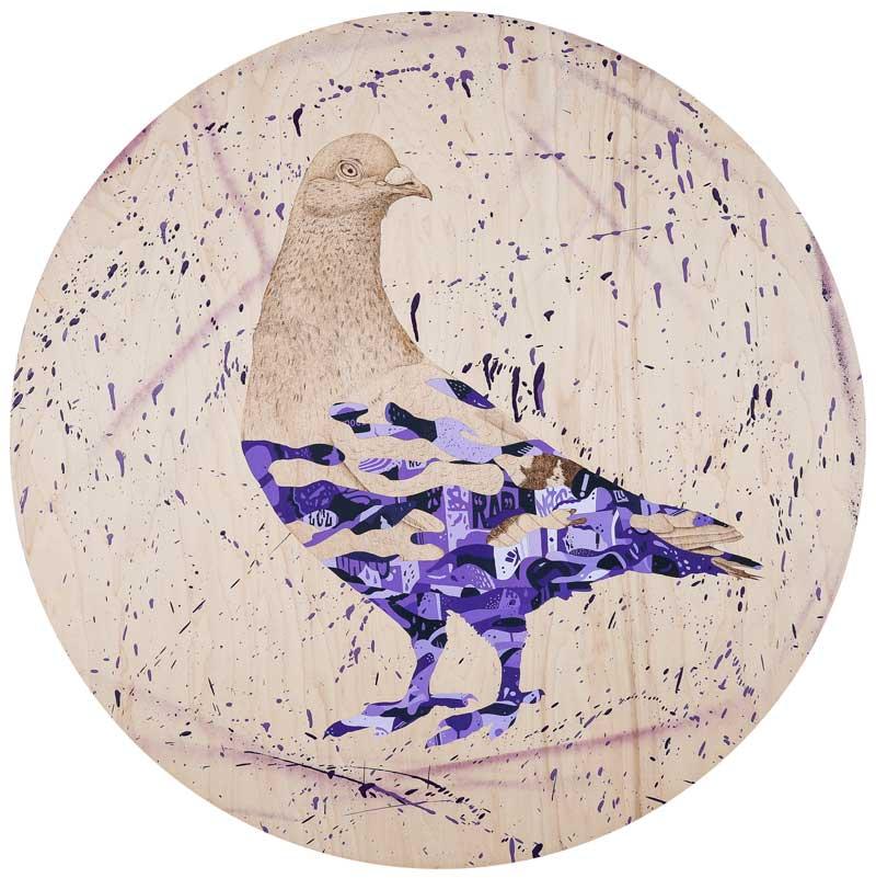 Bird by Jay Shells