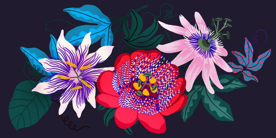 Flowers by VeroEscalante