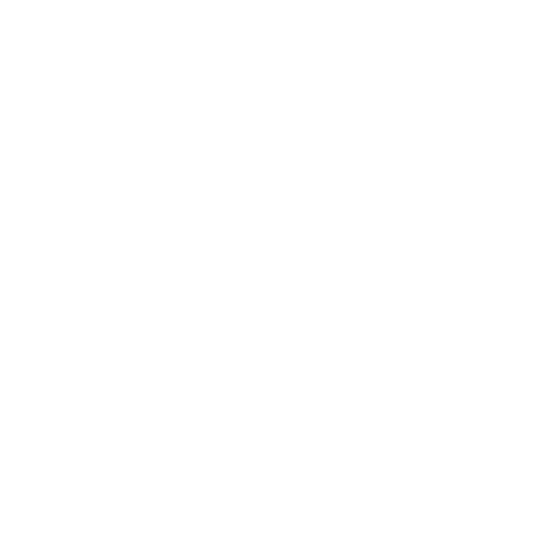 Rag and Bone logo