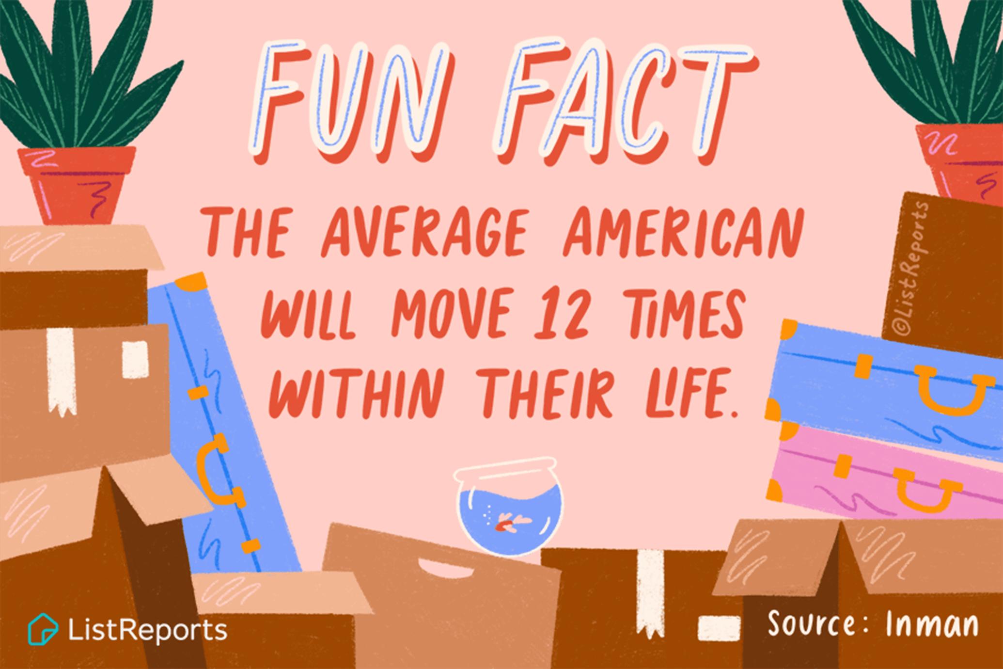 ListReports - Fun Fact
