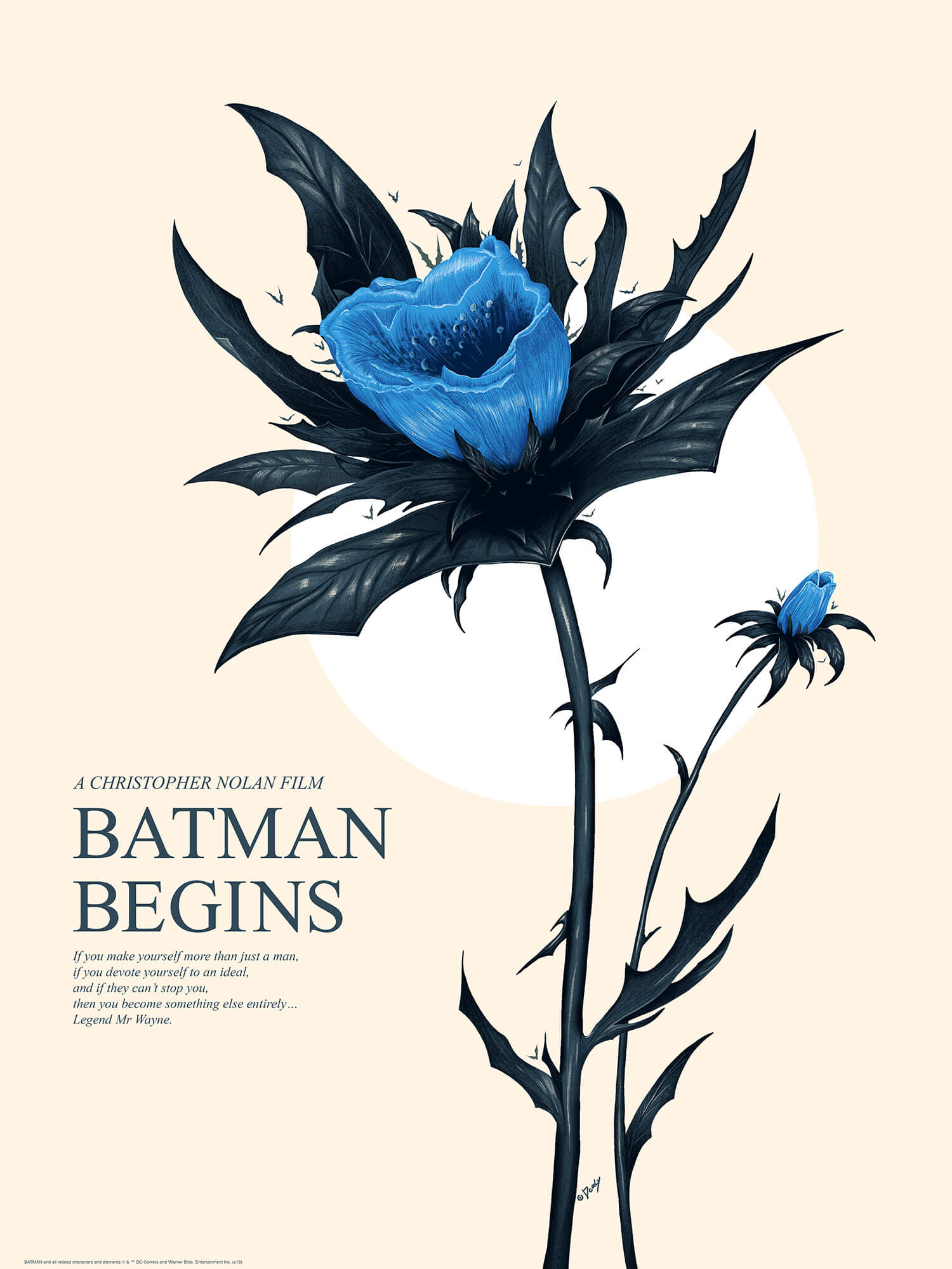 Batman Begins 2 Doaly